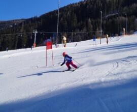Vereinsmeisterschaft Ski 2020